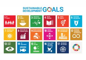 United Nation SDG Goals